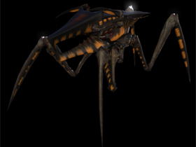 Arachnid Warrior Bug